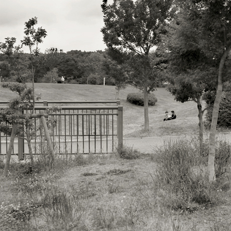 park4.jpg